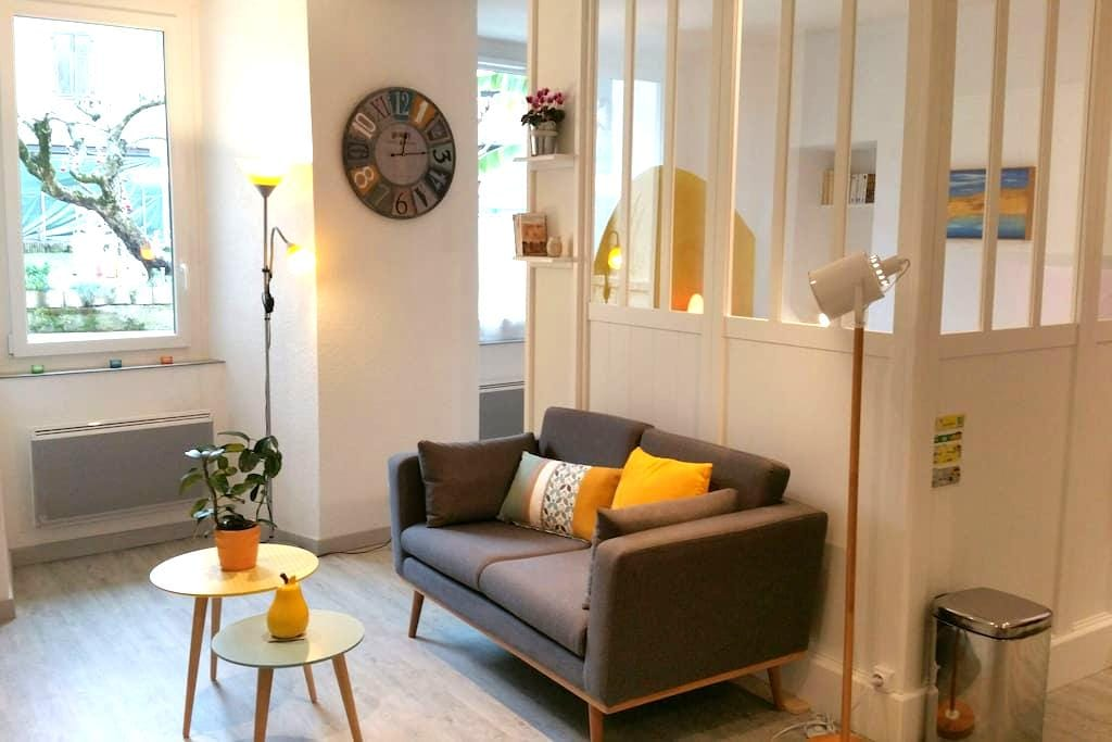 Bright studio with garden view in heart of Evian - Évian-les-Bains - Apartment