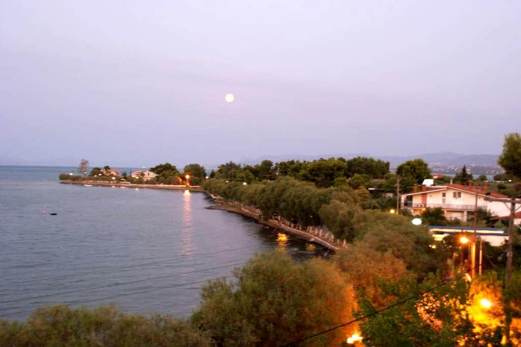 Seaside apartment in Avlida Beach - Paralia