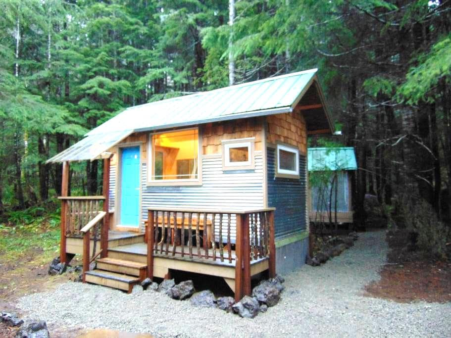 Rain forest cabin - Port Angeles - Cabin