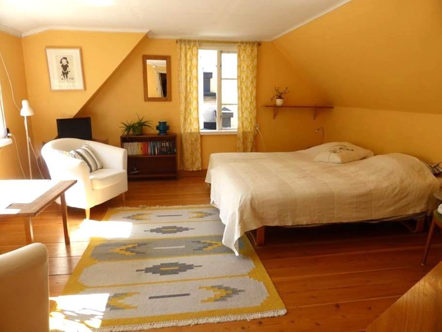 Visby innerstad ovanför Botaniskan - Clemens - Visby - Apartment