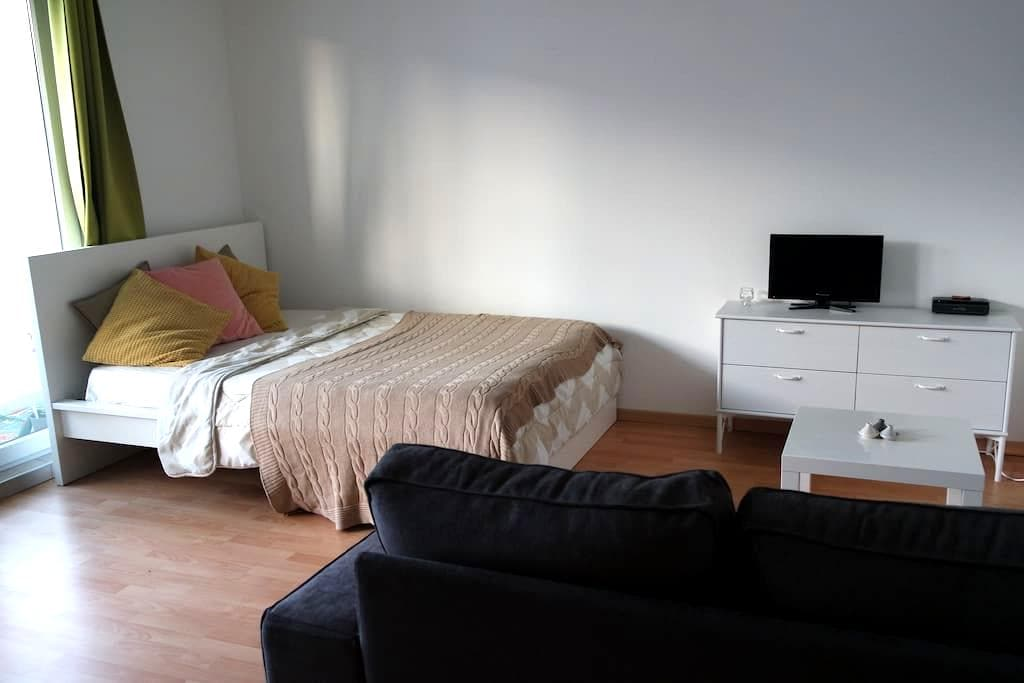 PETIT APPARTEMENT COSY - Riedisheim - Daire