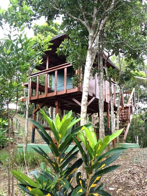 Lake Carite Treehouse - Cayey - Puumaja