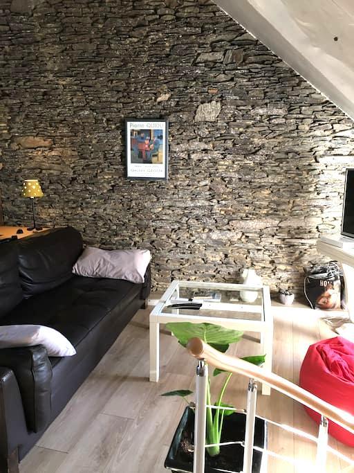 Grande chambre de caractère près de Rennes (+25m2) - Cesson-Sévigné - Rumah