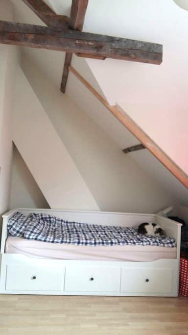 Ruime kamer in gezellig oud huis - Enschede - Hus