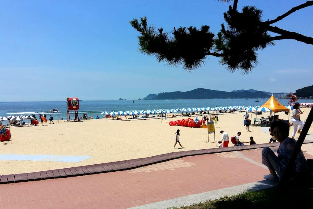 On the beach - Haeundae-gu - Lejlighed