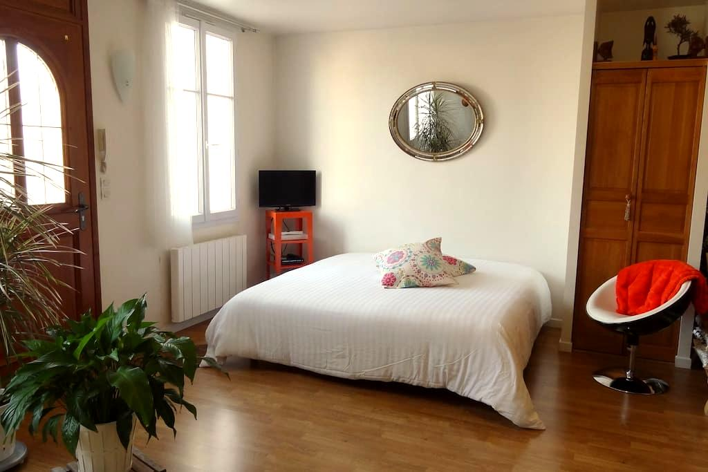 Studio spacious calm 1 with piano - Saint-Cyr-sur-Loire - Huoneisto