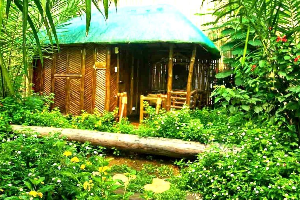 Single detached bamboo hut, Puerto Princesa - Puerto Princesa - Wikt i opierunek