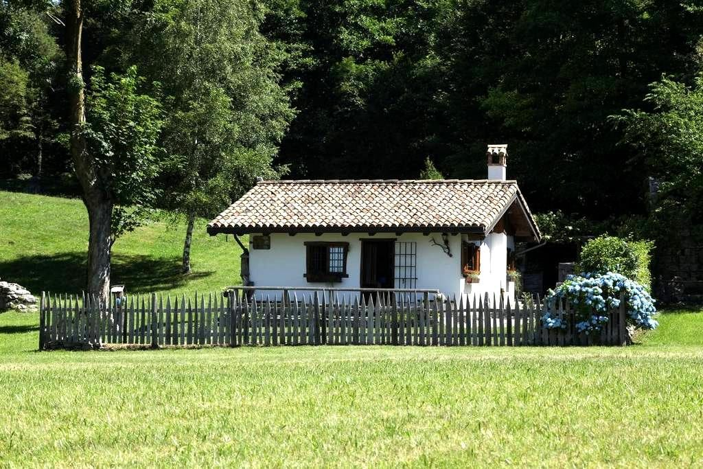 Tana da l'Ors, per rigenerarsi con la natura - Forgaria Nel Friuli