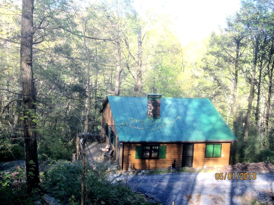 Bear Ridge, a 100 Year Old Cabin by Nat'l Forest - HINTON