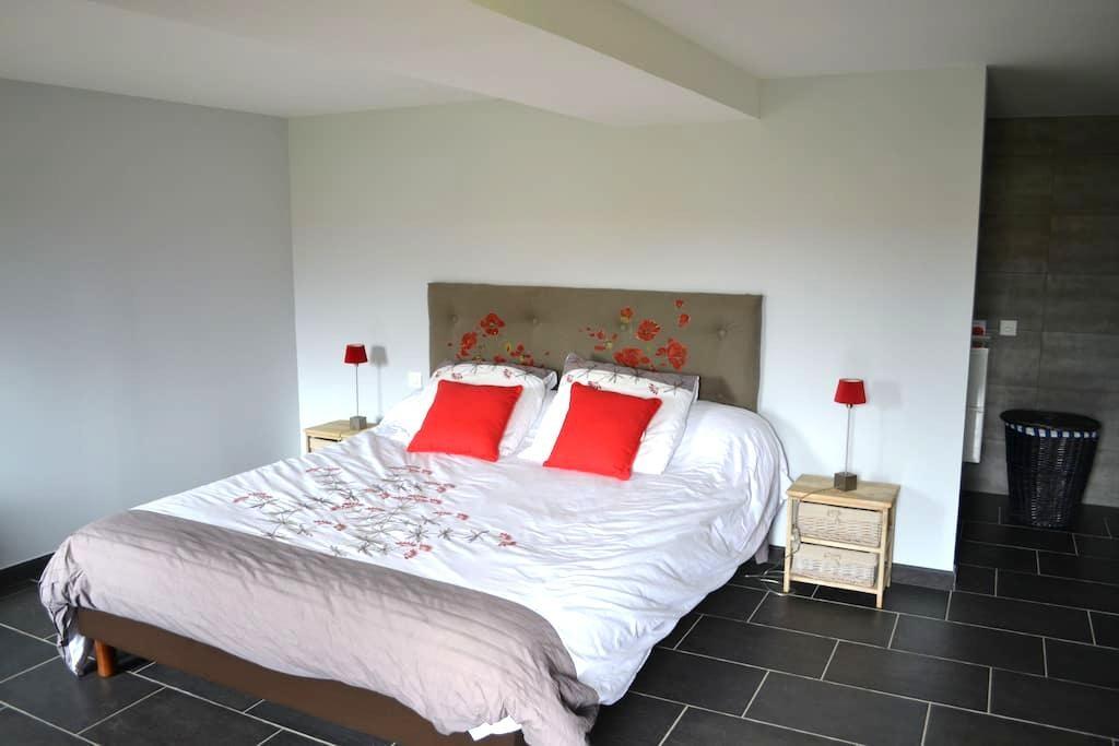 Grande chambre calme, vallée de la loire - Saint-Martin-de-Sanzay - Huis