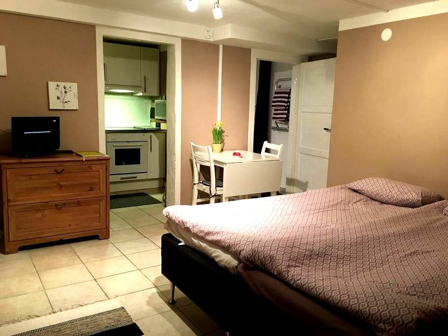 Guest apartment - Visby - Apartment