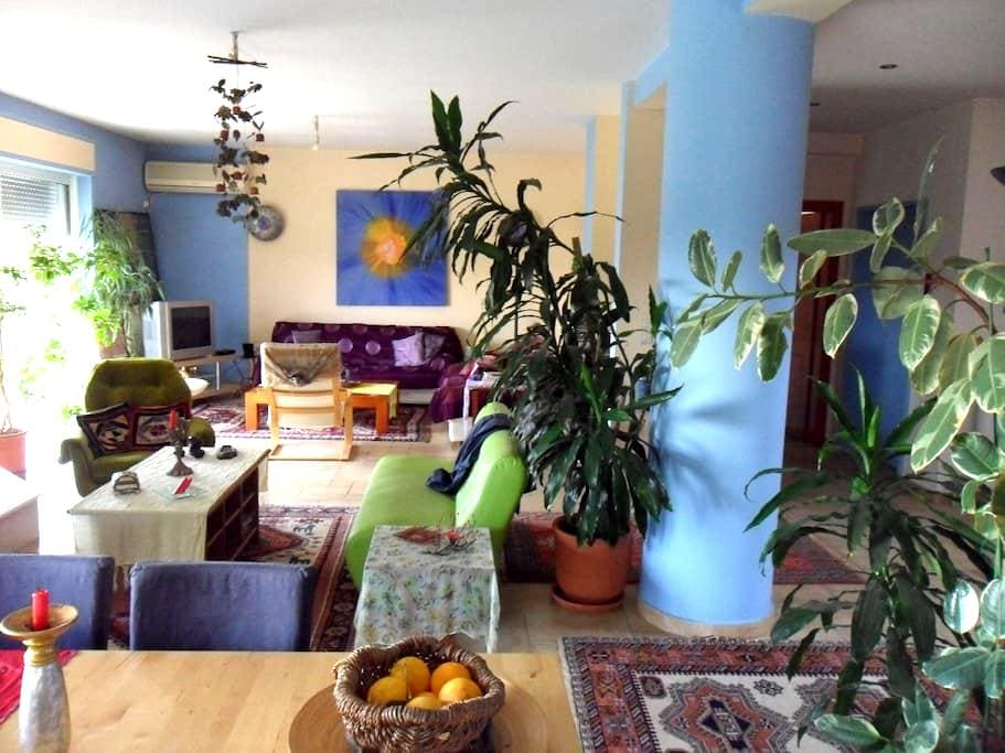 vila with swimming pool near the airport and metro - Pallini - Casa
