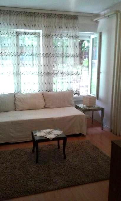 Apartment in center(square SLAVIJA) - Belgrado