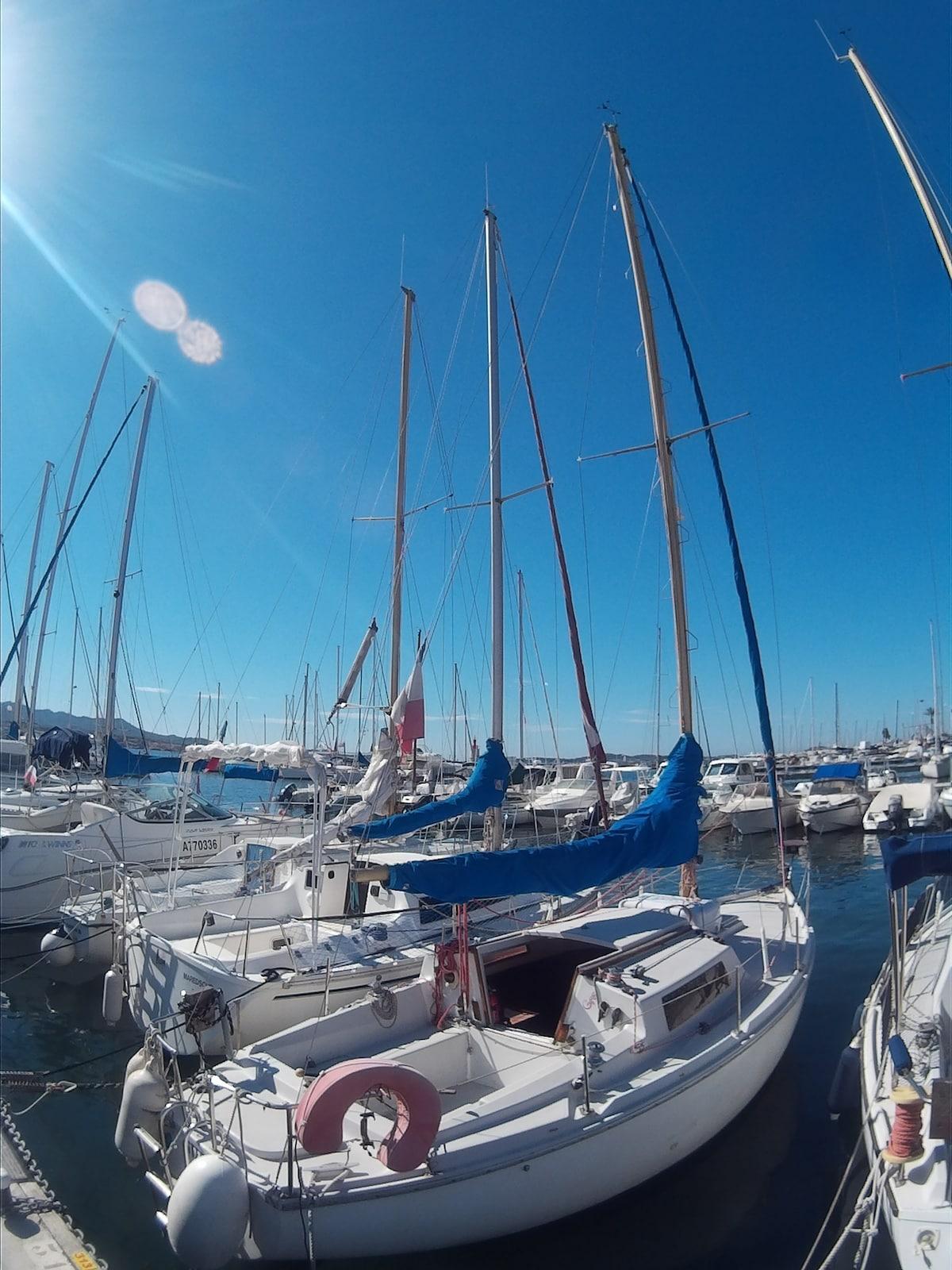 rents 8m sailboat