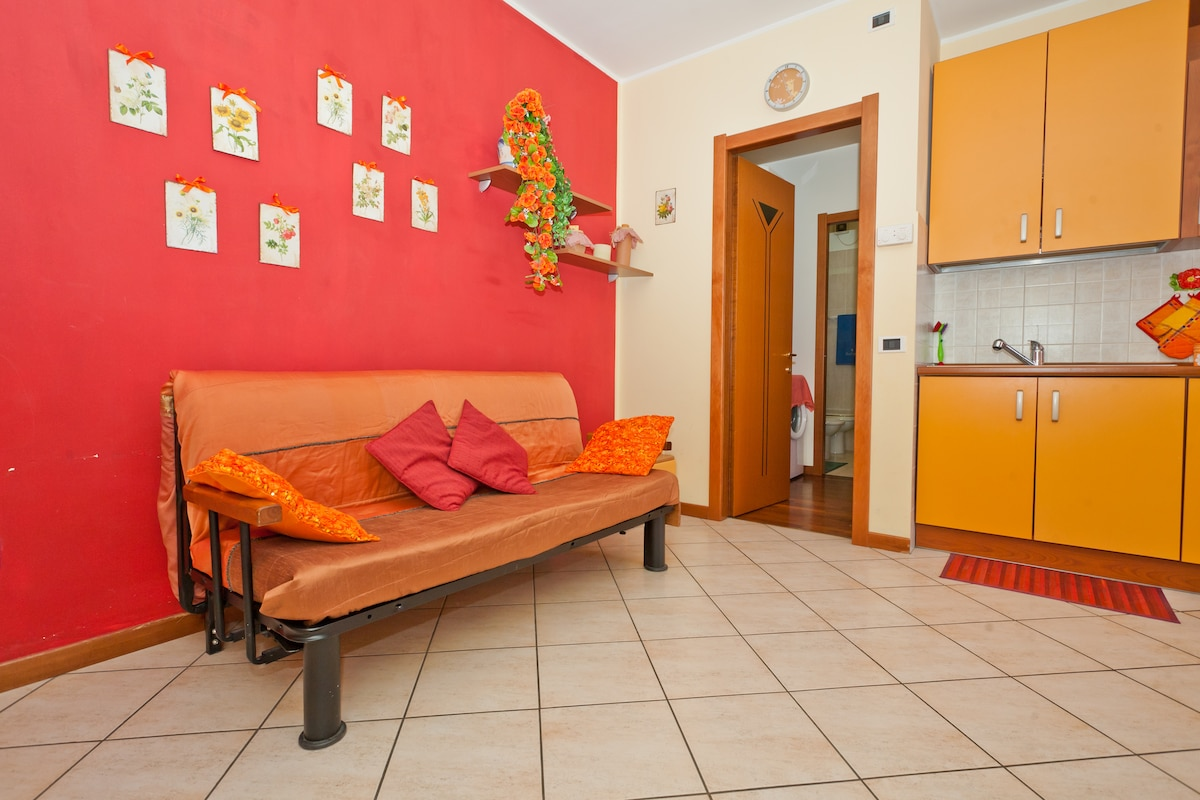 Apartment ROCCA  to 4 km from  Asis