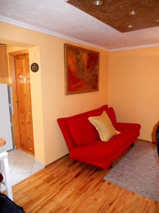 Apartment Monte Rosa - One - Delnice - Appartement