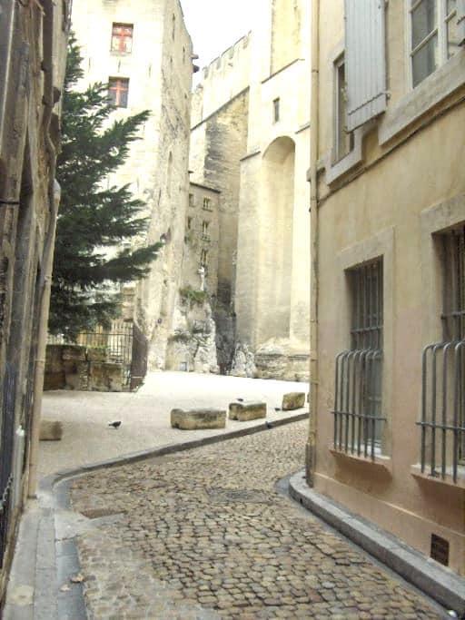 Studio rénové proche centre - Avignon - Annat