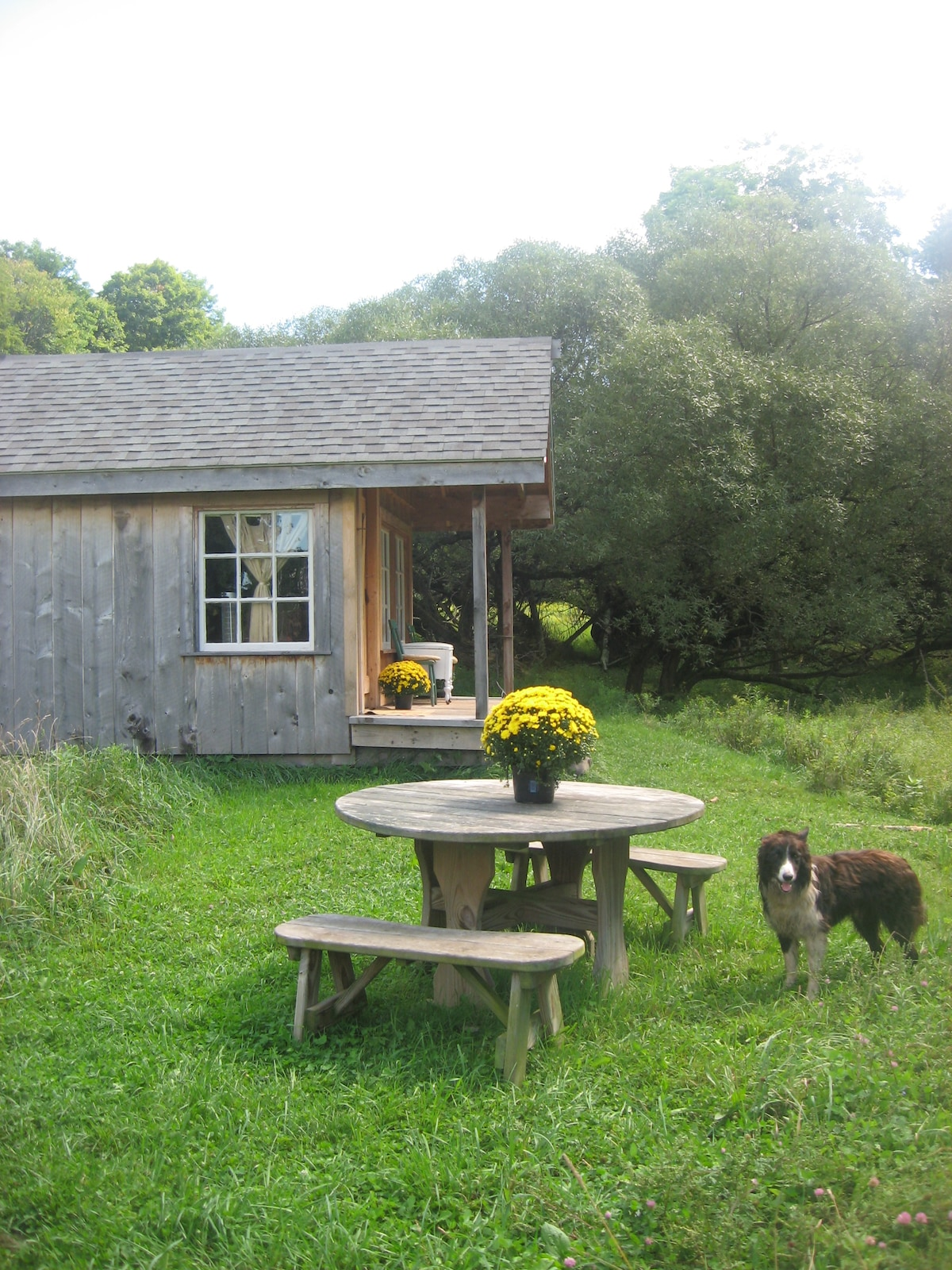Side view with picnic table of Farmhand Cabin