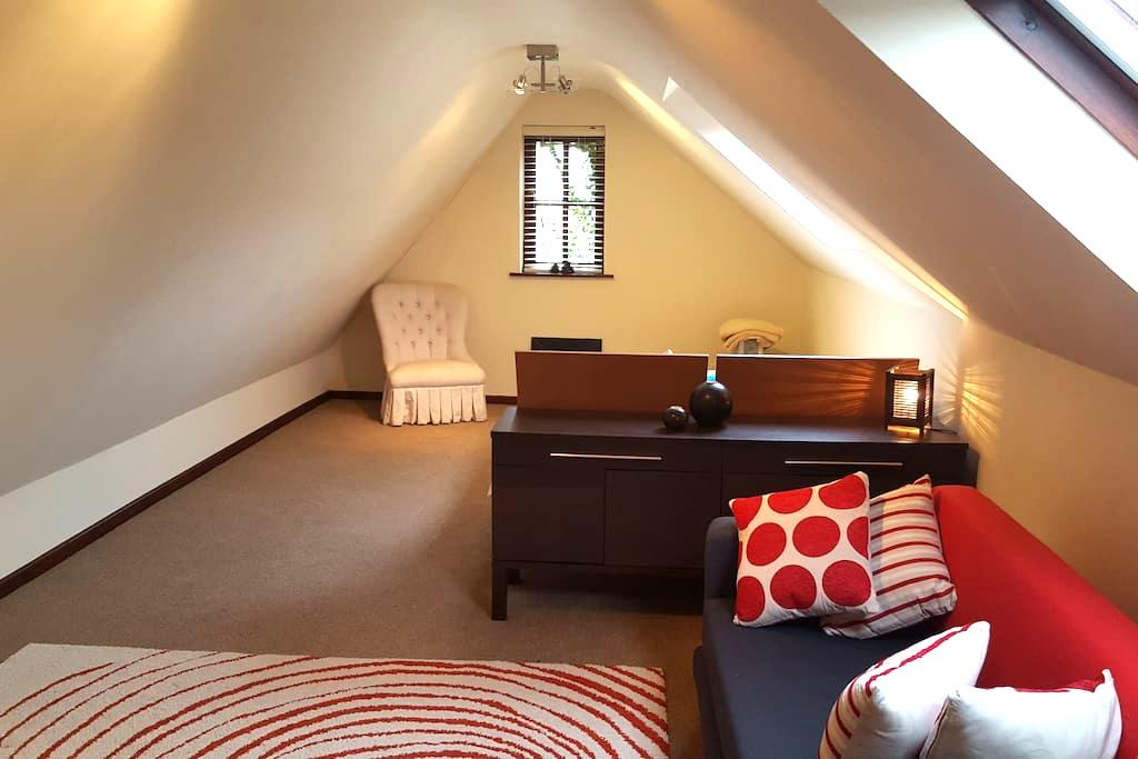 Self catering Studio Apartment - Monmouthshire - Pis