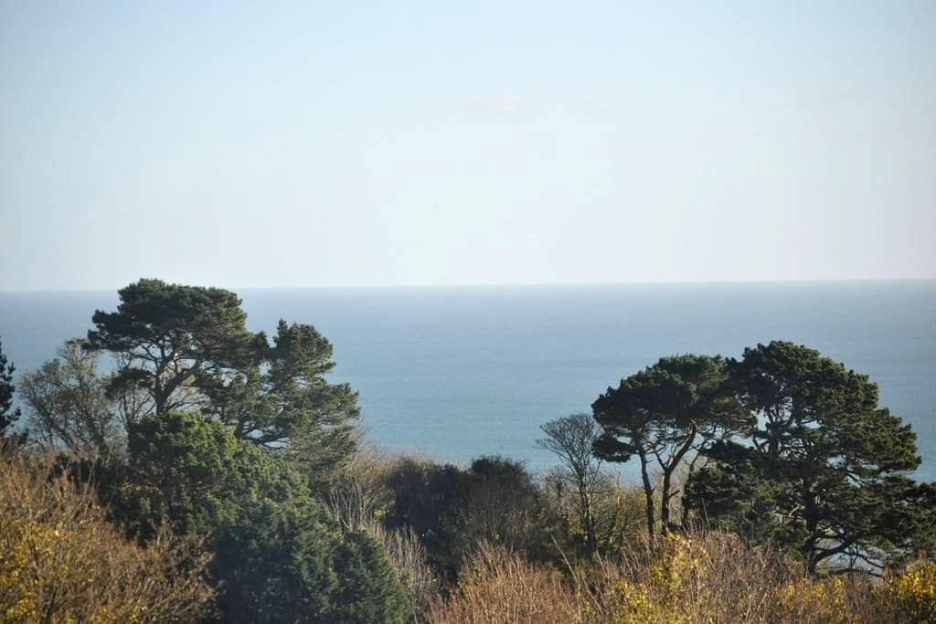 Stunning Sea View Near Dartmouth - Stoke Fleming - Apartment