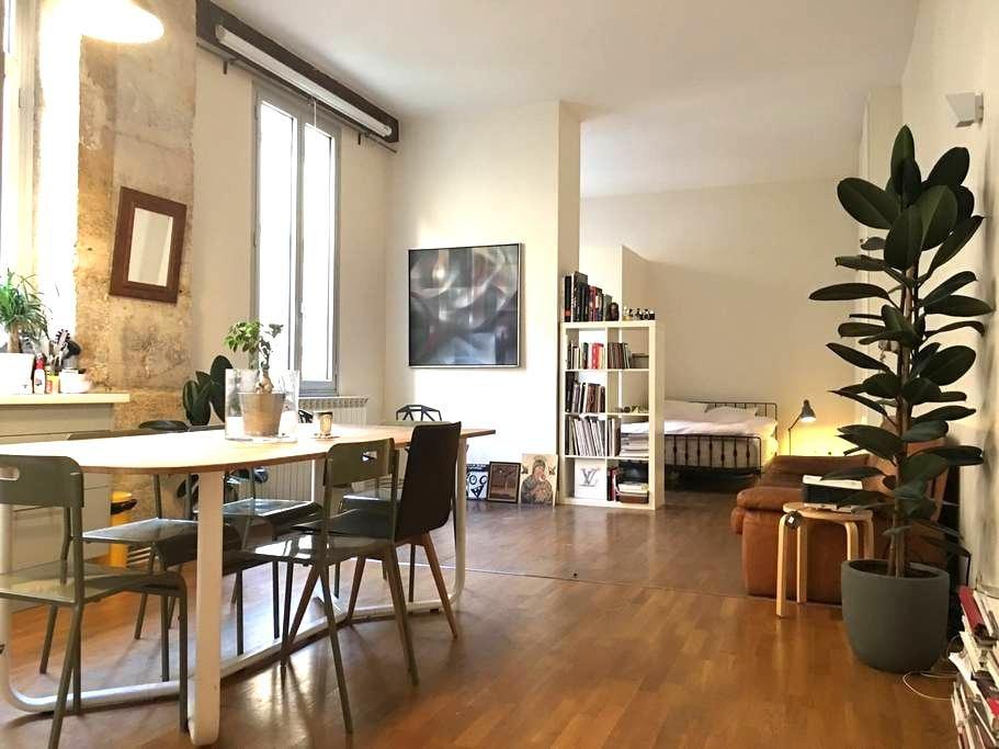 Sunny beautiful Loft Paris in trendy 11th - Paris - Appartement