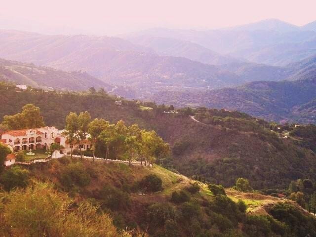 Chateau Carmel
