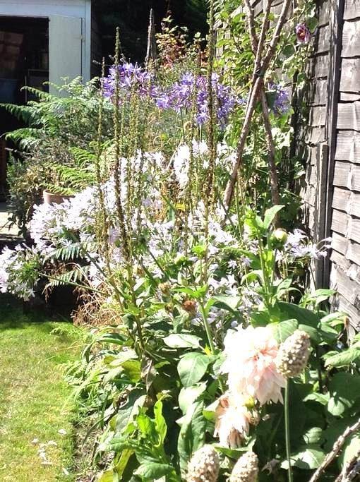 Victorian Cottage with garden - West Molesey