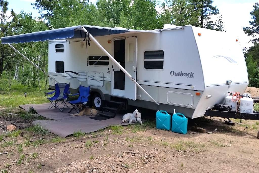 Camper in High Woods - Cripple Creek