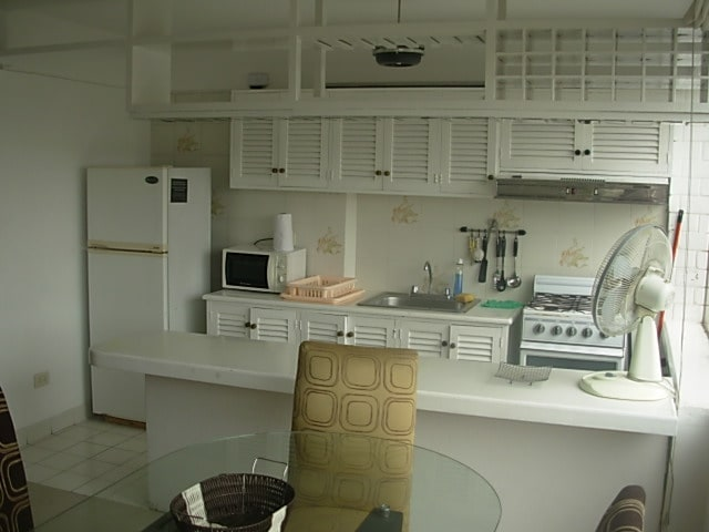 Kitchen area has lots of natural light