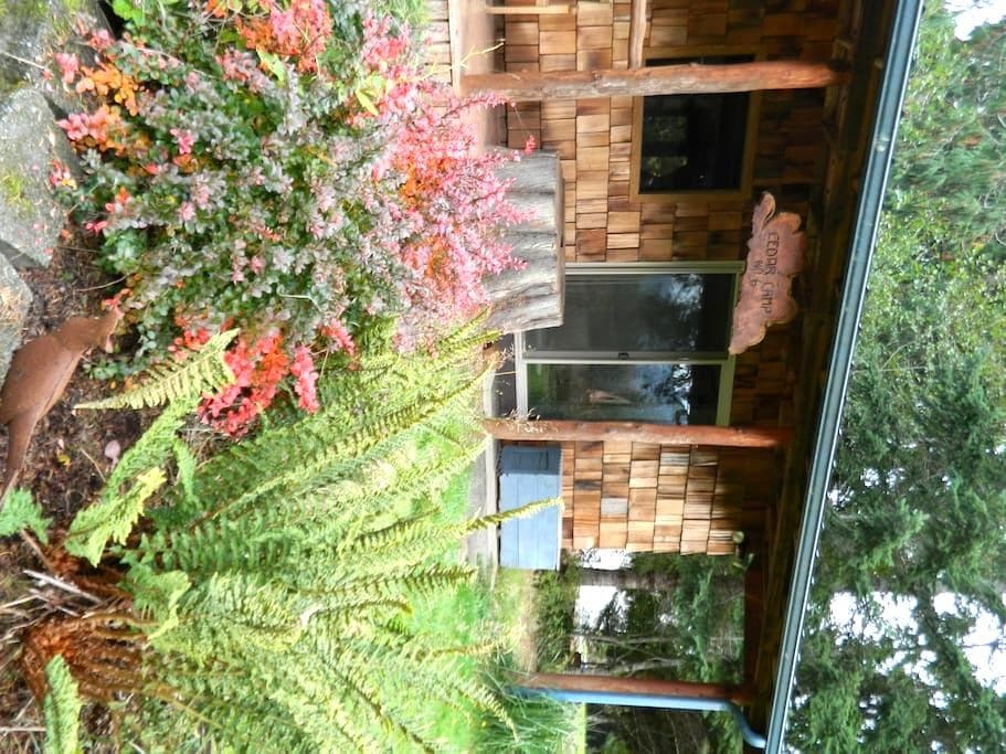 Cedar Camp # 6 Cozy Cabin - Port Angeles