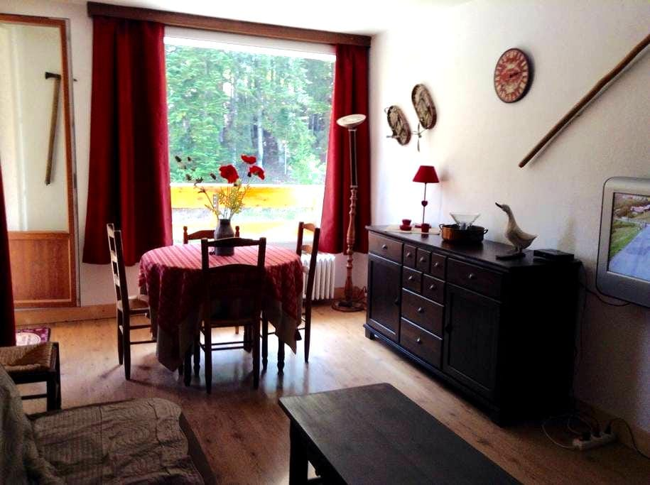 Charmant T3 45m2 Pra Loup 1600 - Uvernet-Fours - Appartement
