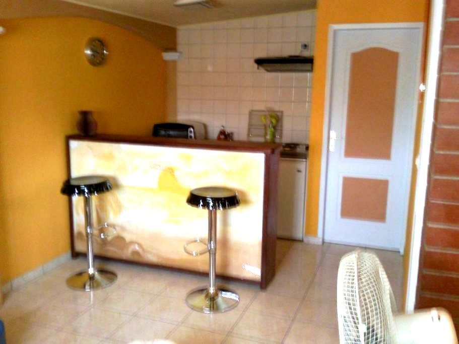 Barbadine location 2 - Matoury - Villa