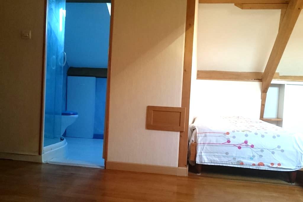 Chambre calme et lumineuse - Orléans - Bed & Breakfast