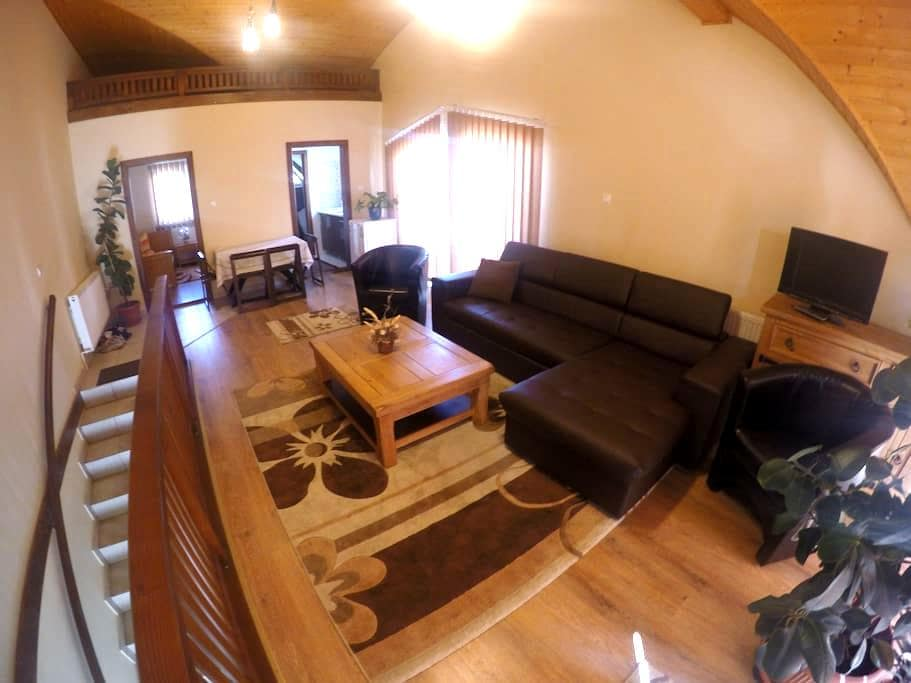 Family apartment in Sovata - Sovata - 樓中樓
