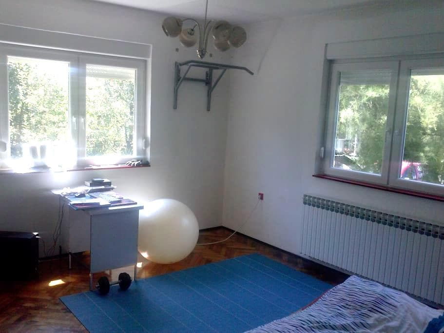 A big Fight club style room :) - Zagreb - Appartement