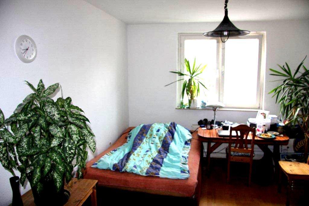 1 Room near Fair and City Center - Frankfurt - Daire
