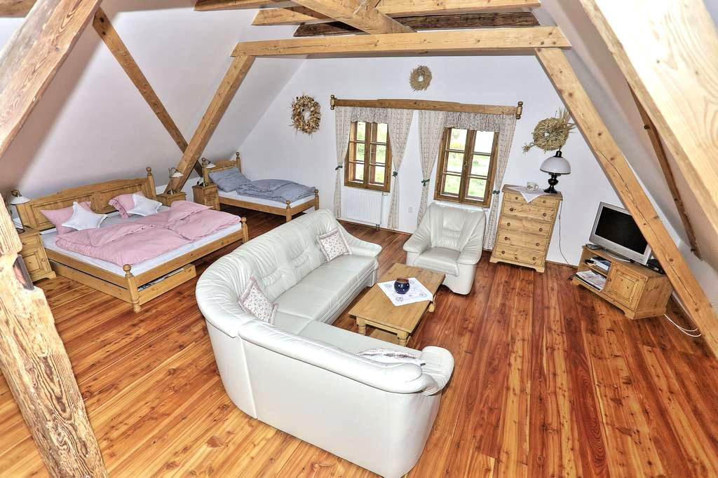 Exclusive Water Mill Near Prague - Mnichovice