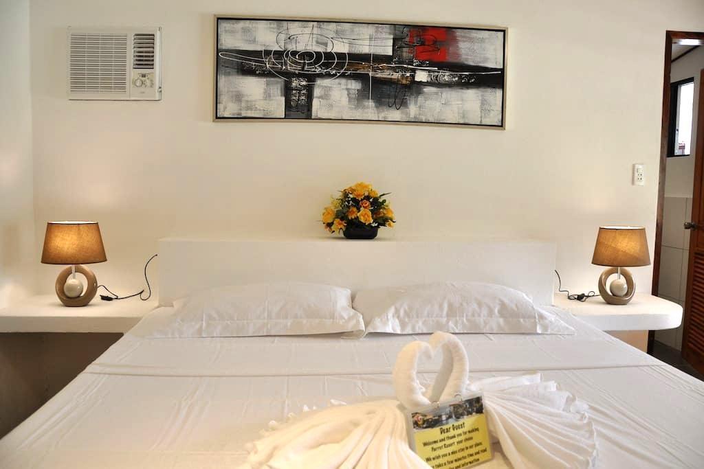 Parrot Resort Poolside Room 2 - Moalboal - Hotel boutique