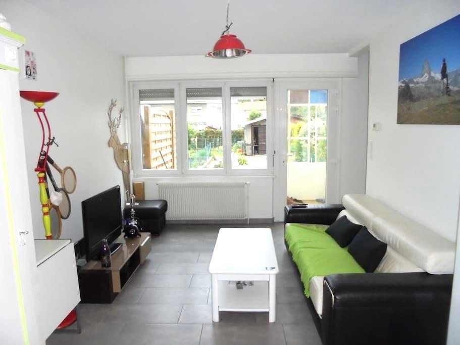 Un petit coin de jardin au cœur de Mulhouse - Mulhouse - Řadový dům