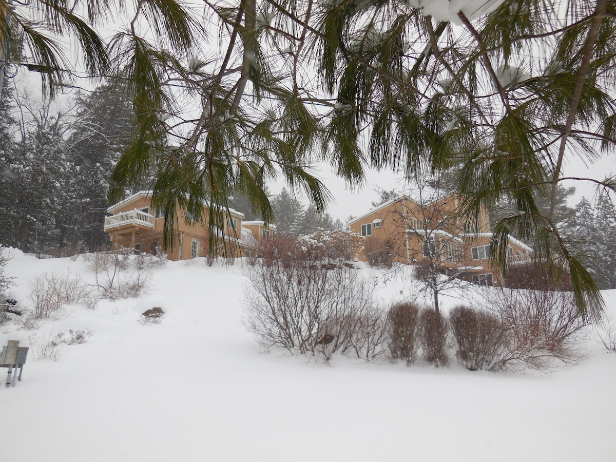 Wintertime in the Valley. Guest house to the left.