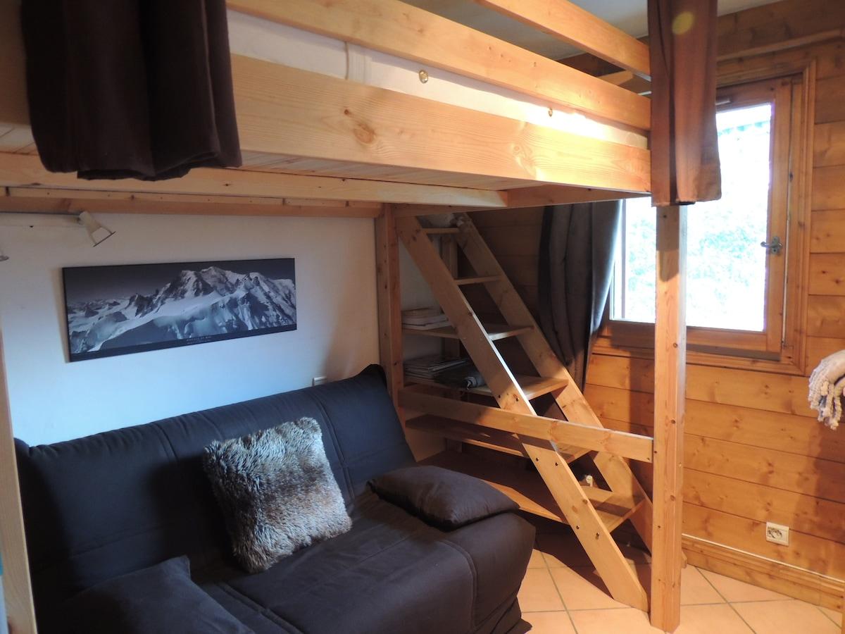 Charmant Studio centre de Chamonix