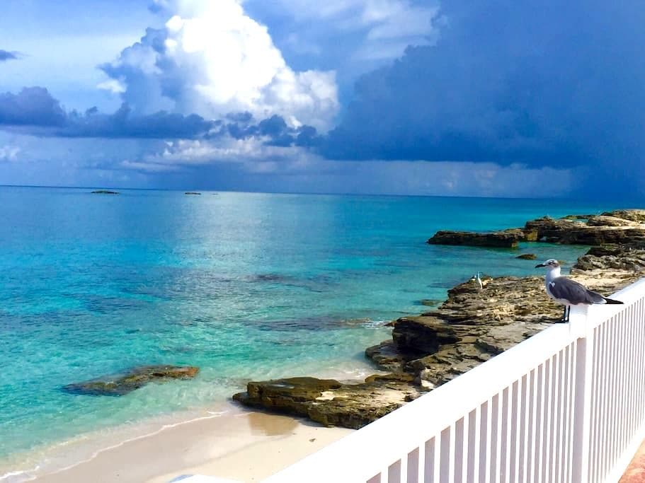 Sunset Paradise With Private Beach - Bimini - House