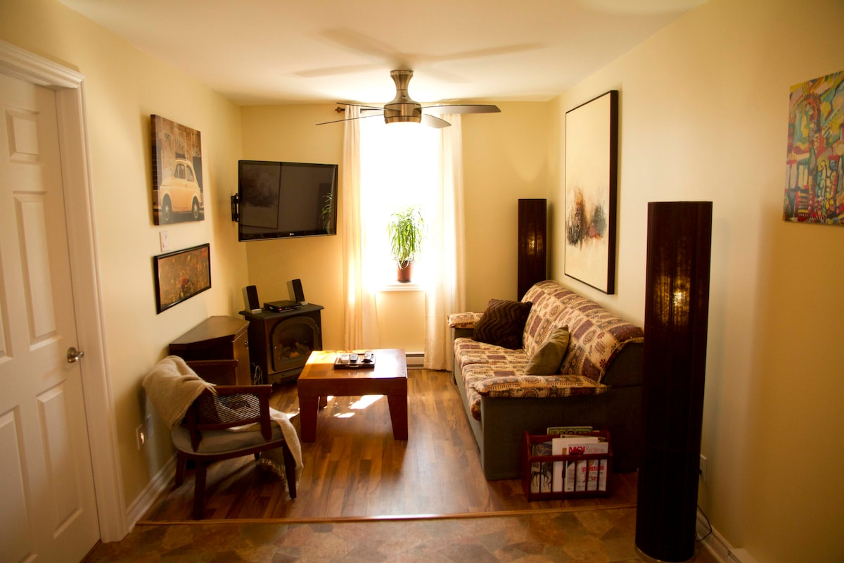 This living room is equipped with Iphone docking station sound system, large 48 inch TV and a sofa bed.