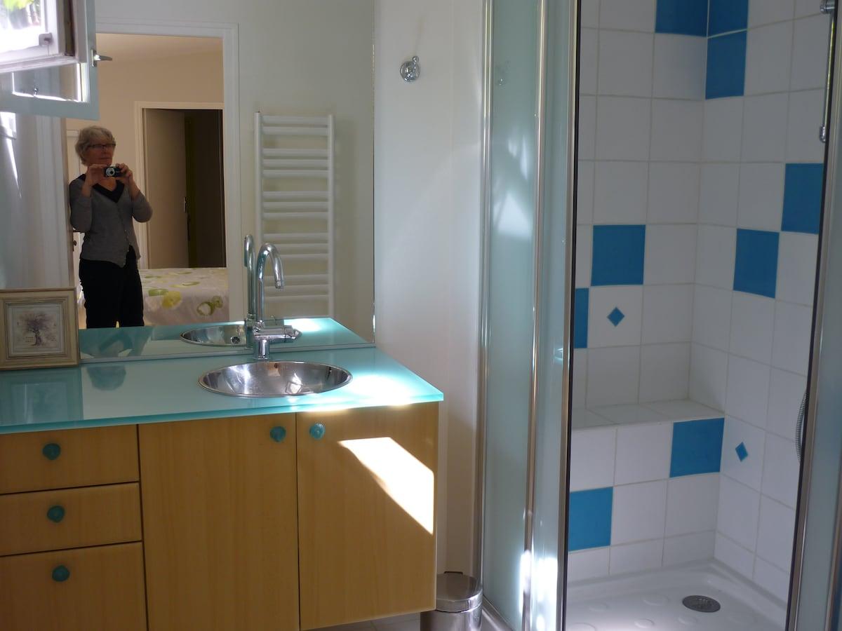 Bathroom with ... hidden facilities...