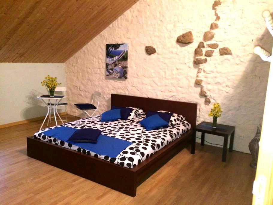 Chambre de 25 m2 dans grande maison - La Quarte
