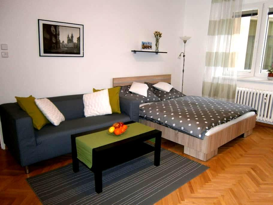 Studio Pražského Povstání city center 10 min - Prague - Apartment