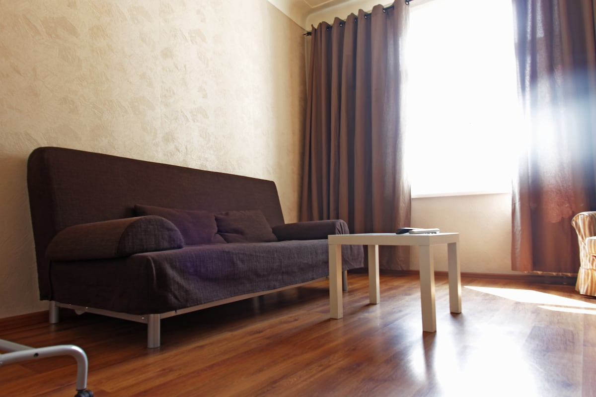 Living-room. This sofa we can transform to a bed.