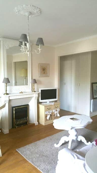 Bel appartement proche centre ville - Dijon - Lejlighed