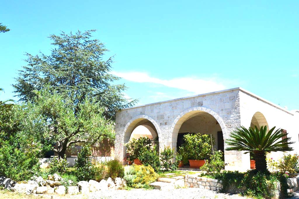 Boschetto in Valle D'Itria: L'ulivo - Cisternino - House
