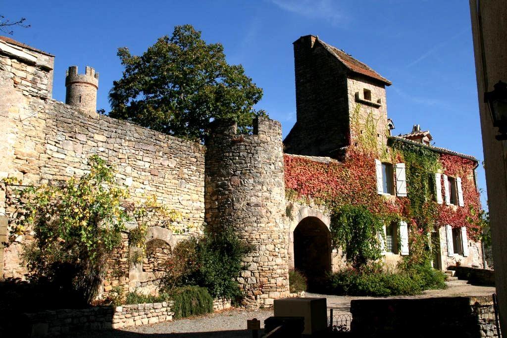 Gites du château - Milhars
